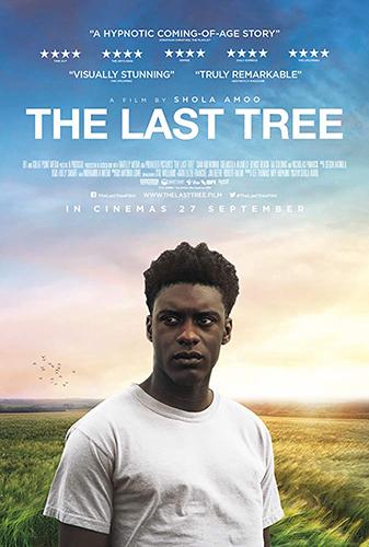 The Last Tree cover - Credit IMDB
