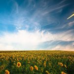 Renewable power outperforms gas