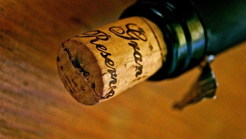 Paula's Wines of the Week – Week starting 13 July 2020