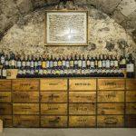 Paula's Wines of the Week – 8th February 2021