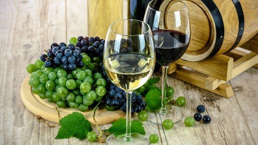 Paula's Wines of the Week – 29th June 2021